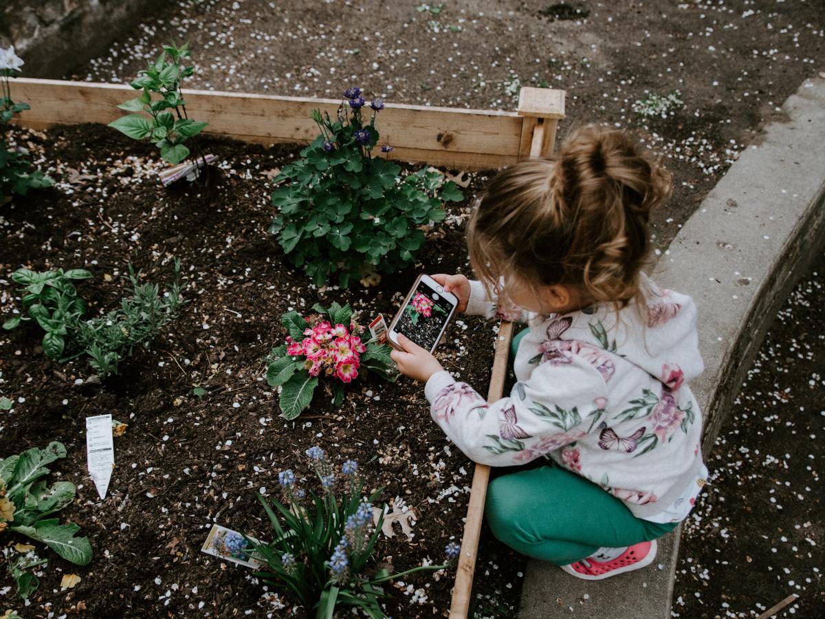 Huerto para niños / Foto: Kelly Sikkema (unsplash)